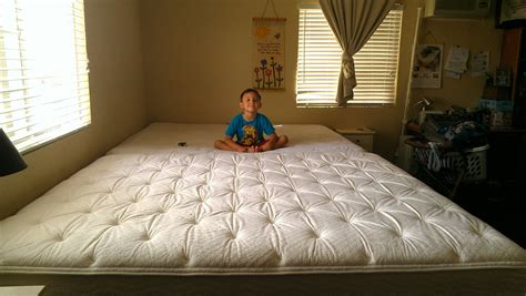 one world homeschool our new family bed
