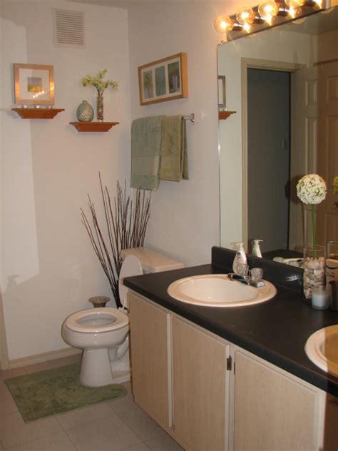 Bathroom Ideas On A Budget by Apartment Bathroom Decorating Ideas On A Budget
