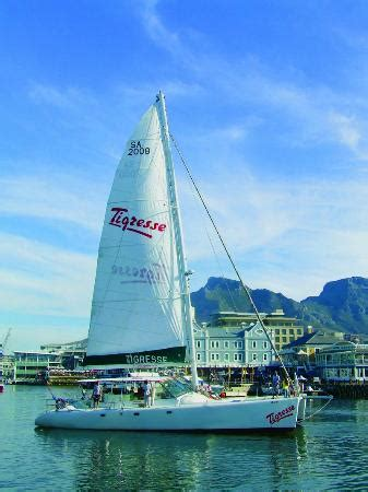 Catamaran Trips In Cape Town by Tigresse Catamaran Cape Town Central All You Need To