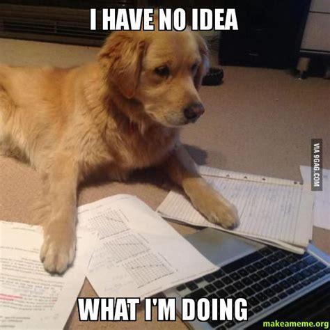 I Have No Idea What Im Doing Dog Meme Wwwimgkidcom