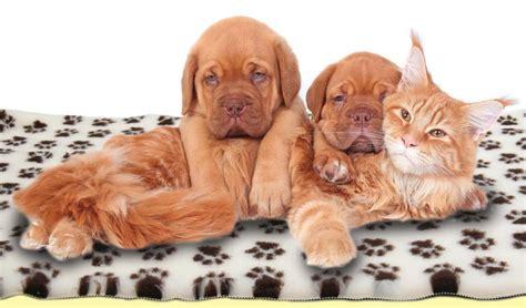 vet bed non slip roll pro whelping fleece cat animal puppy kitten bedding ebay