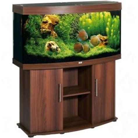 achat de poissons d aquarium guide d achat pour animaux