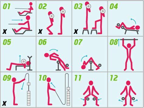 hapro i bevegelse treningsplan