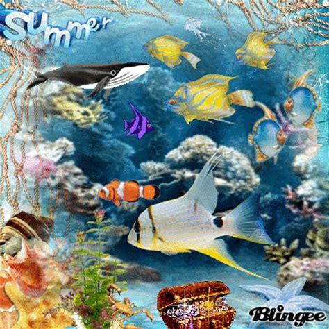 aquarium picture 124760989 blingee