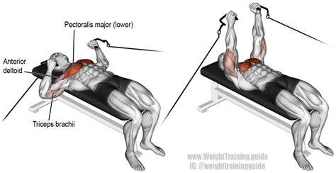 Cable Bench Press Exercise Instructions And Video Weight