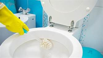how to clean a toilet today