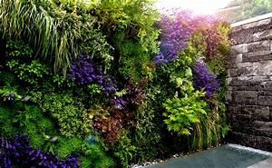 Pflanzen An Der Wand : livingwall archive nathalie 39 s pflanzenwand ~ Markanthonyermac.com Haus und Dekorationen