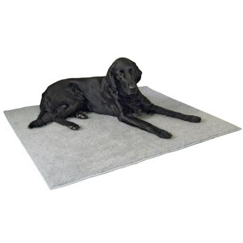 tapis antid 233 rapant tapis pour chien kerbl wanimo