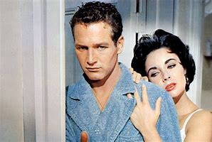 Image result for images cat on a hot tin roof