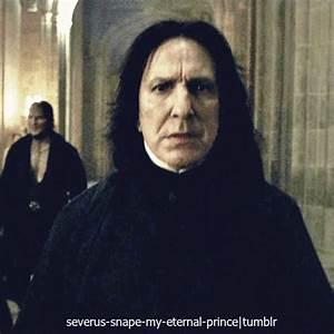 "Its Levi-O-sa — ""Do you love me Severus?"" Snape X Reader"