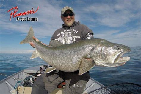Is Isaac From The Love Boat Still Alive by 83 Pound Lake Trout That Would Ve Smashed The World Record