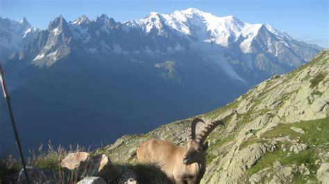 photo tour du mont blanc jour 8