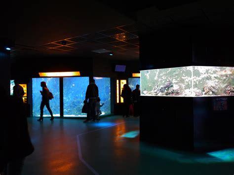 リヨンの水族館 aquarium de lyon