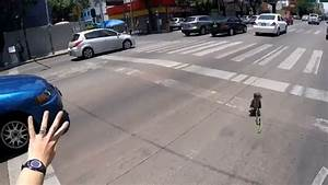 This Puppy narrowly escapes being RAN OVER in this intense ...
