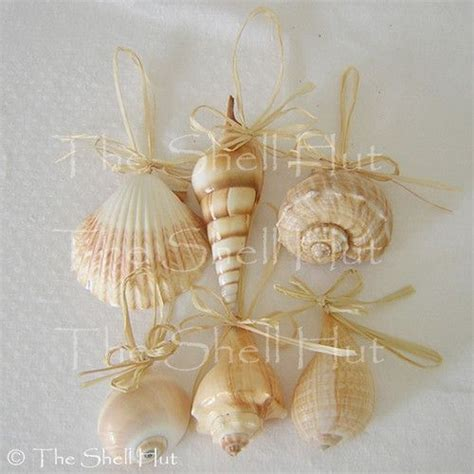 Seashell Christmas Tree Pinterest by Christmas Tree Ornaments Seashells And Christmas Trees On