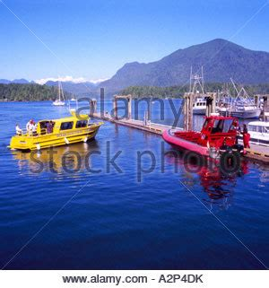 Zodiac Boat Whale Watching Vancouver by Whale Watching With Zodiac Boats Vancouver Island Victoria