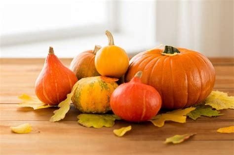 l 233 gumes d automne comment cuisiner les cucurbitac 233 es bio 224 la une