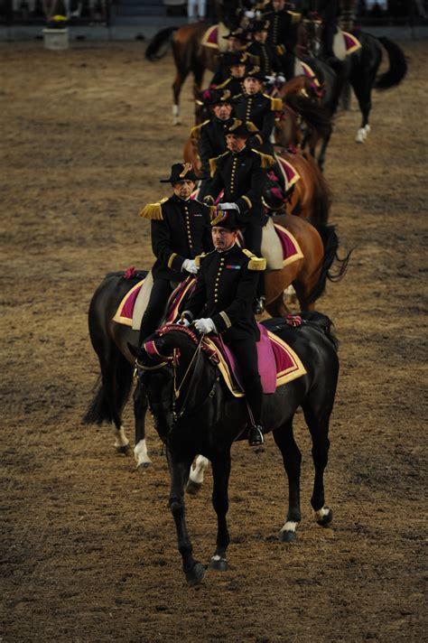 les 15 meilleures images 224 propos de chevaux du cadre noir de saumur sur espagnol