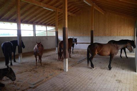 tapis caoutchouc de box matelas confort pour chevaux