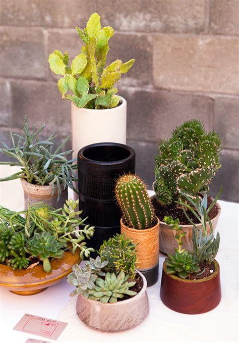 The Koenigs Create 15 Beautiful Indoor Cactus Gardens