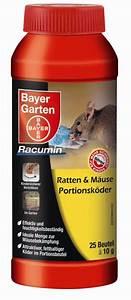 Mäuse Im Keller : bayer garten ratten m use portionsk der gegen kleintiere baumschule horstmann ~ Markanthonyermac.com Haus und Dekorationen