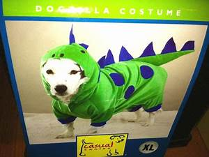 Fido Pet Shop : old city pet store selling hilarious halloween costumes for fido and felix cbs philly ~ Markanthonyermac.com Haus und Dekorationen
