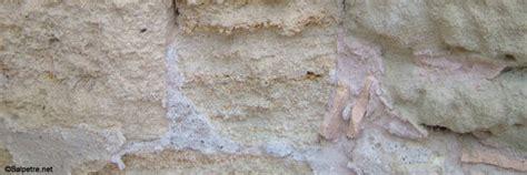 comment traiter le salpetre sur un mur exterieur la r 233 ponse est sur admicile fr