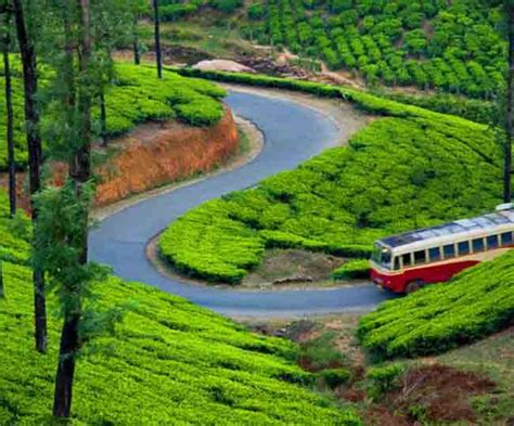 6 Best Places To Visit In Munnar