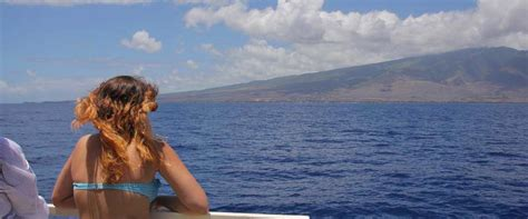 Maui Boat Tours by Sightseeing Boat Tours On Maui