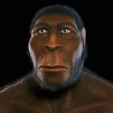 """A Family Tree """"hobbits"""" And Our Human Ancestry Cannibal"""