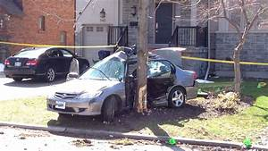 Man dead after car crashes into tree in midtown Toronto