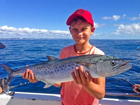 Round Boat Hire Noosa by Family Fun Noosa Boat Hire
