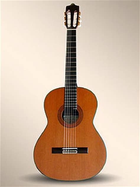 la guitare ville de savigny le temple