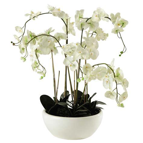 orchid 233 e artificielle en pot h 98 cm flora maisons du monde