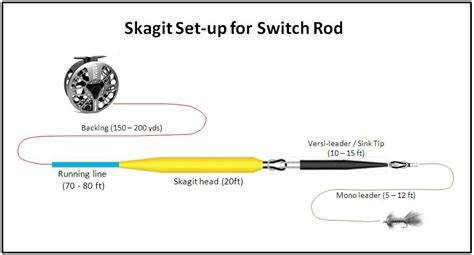 d loop spey skagit set up for switch rod