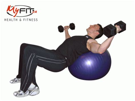 exercise dumbbell chest pullovers exercise myfit