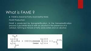 FAME (Fatty Acid Methyle ester) analysis