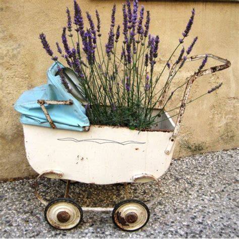 131 best images about all lavender in pots containers on vintage vintage wooden