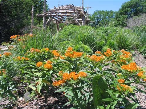 How To Design A Native Plant Garden  Dyck Arboretum