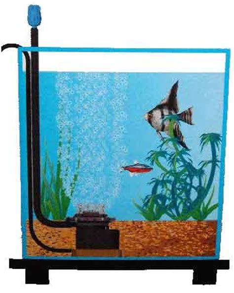 guppy refs pompe air et bulleur aquarium