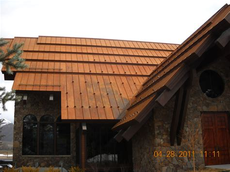 snowclip types professional roofing
