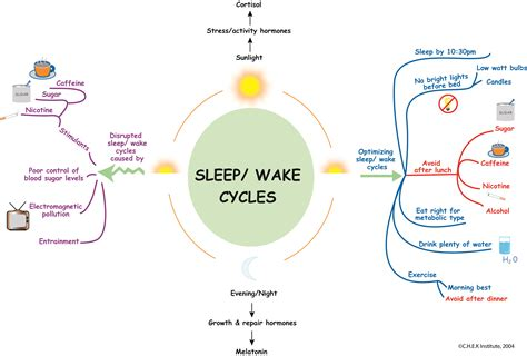 Sleep Wake Cycle by How Tired Are You Sleep Your Most Important Recovery Tool