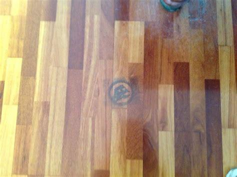 removing pet urine stain on wood floor thriftyfun