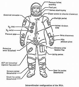 Space Suit Layers Diagram - Pics about space