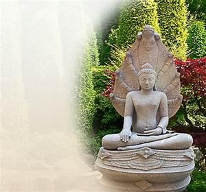 Winterpflanzen Für Den Garten : buddha statue f r den garten ~ Whattoseeinmadrid.com Haus und Dekorationen