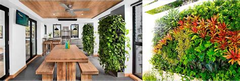 10 Best Indoor Vertical Garden Plants For Delhi Ncr
