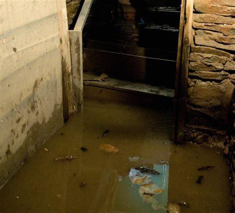 mike bad weeping tile basement grief winnipeg free press homes