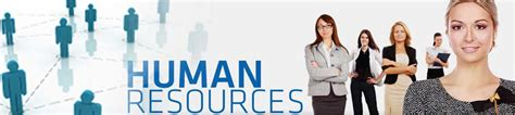We Do Your Online Class Human Resources Development. Title Loans Lake Charles La Sage 100 Price. Another Name For Square People Who Dont Drink. Unified Communications Houston. Corpus Christi Luxury Hotels. West Fresno Middle School Events In Pensacola. Multiple Sclerosis Incontinence. Moving Pictures Red Oak How To Email Campaign. Internet Providers Orlando Fl