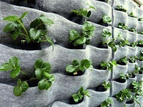 Innovative Vertical Garden Ideas-urban