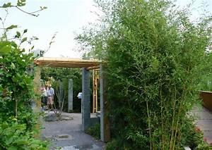 Bambus Im Garten : gartengestaltung mit bambus bambusrohre asiatisches flair bambuspflanzung als sichtschutz ~ Markanthonyermac.com Haus und Dekorationen